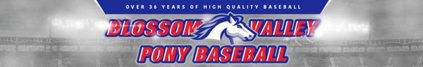 Blossom Valley Pony Baseball