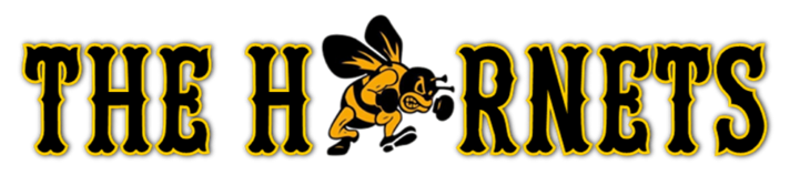 The hornets logo