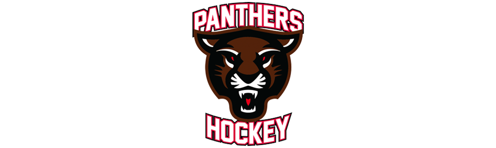 Panthers banner