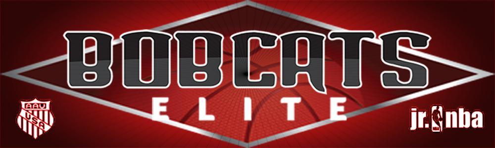 Bobcat website banner 1000x300 2