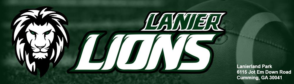 Lions banner2021