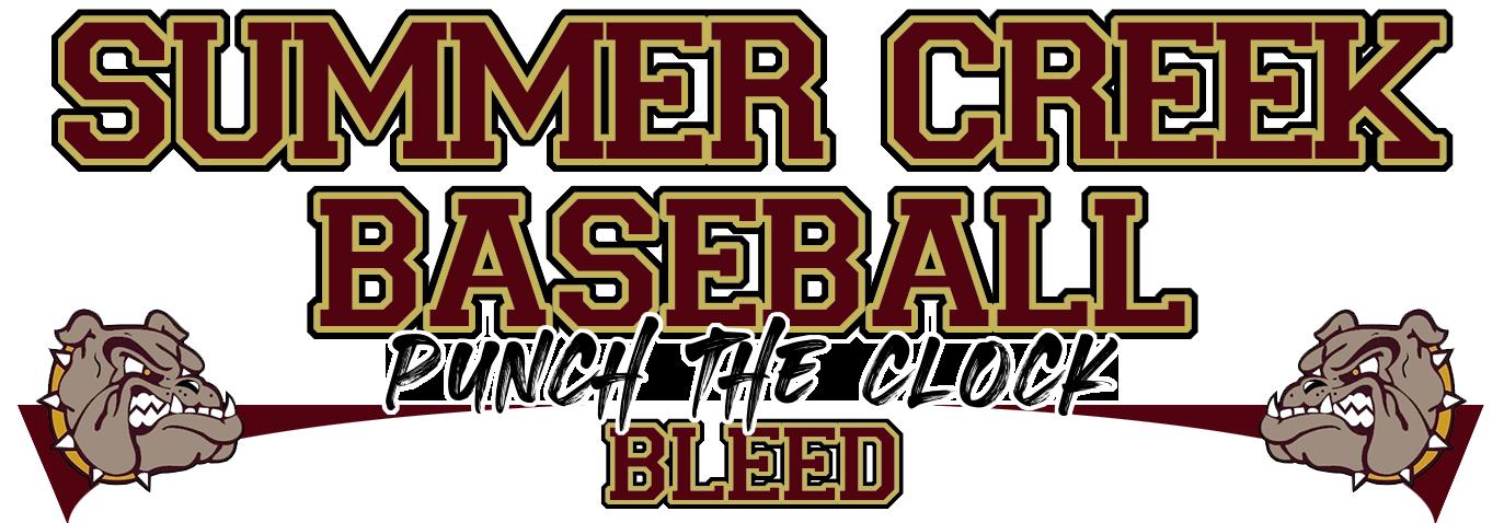 Schs baseball banner new