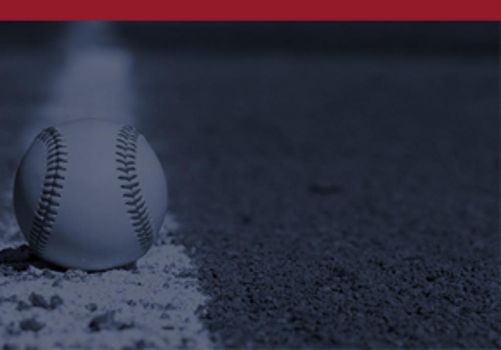warwick township baseball