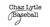 Orlando Baseball Lessons Staff