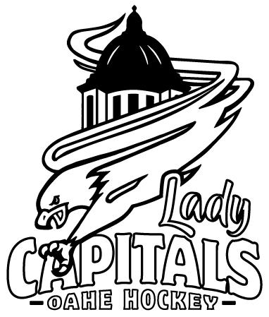 logo use graphics