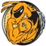 Hornet logo  2