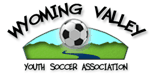 Wvysa_logo