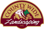 County_wide