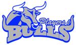 Bulls_small