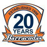 20th anniversary bghc logo