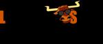 Longhorn solar official logo 5 inch