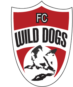 Wild Dogs Tryout Information