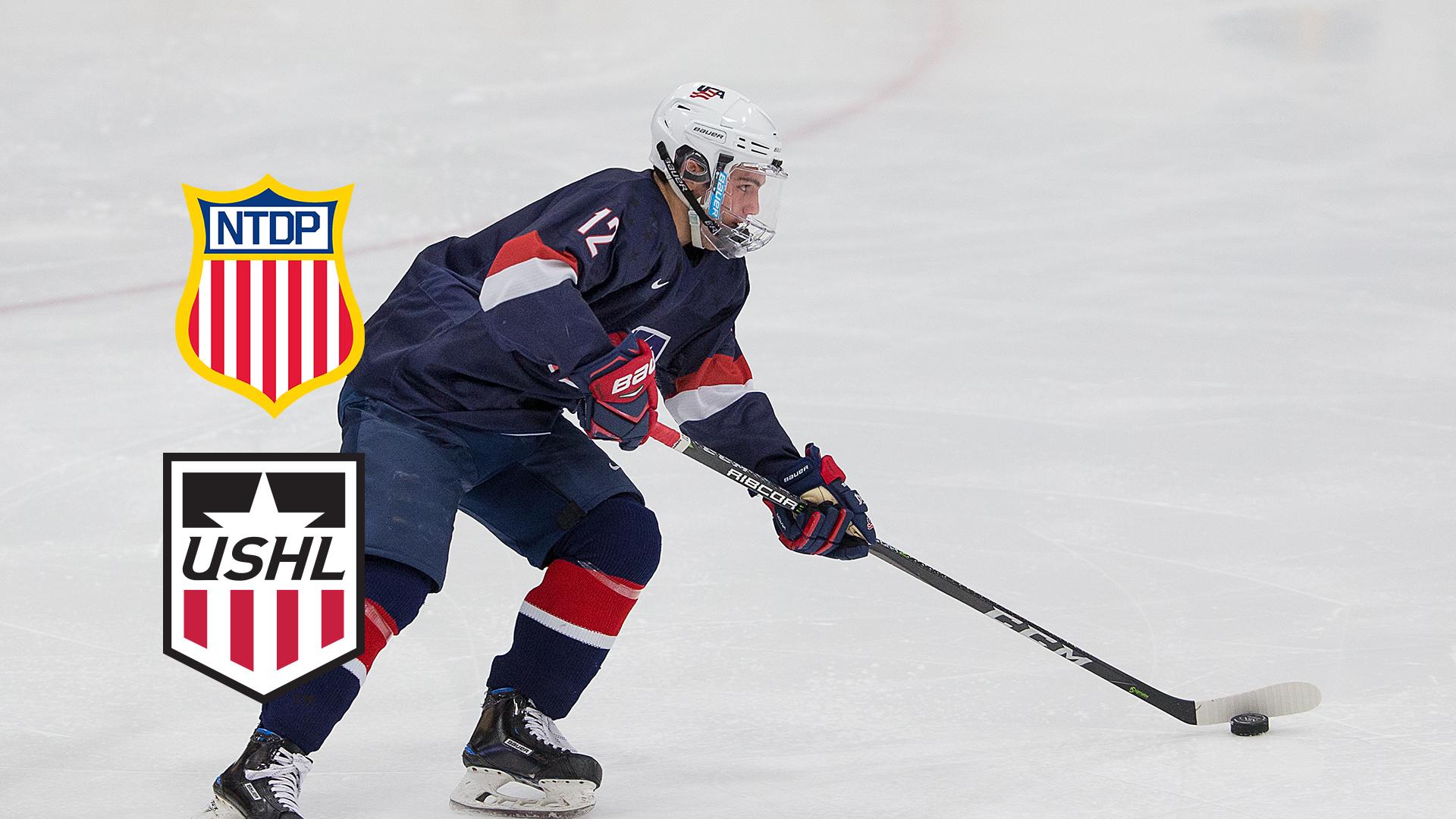 USHL: USA's Development Program Turning Heads With Youth