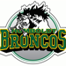 Humboldt Broncos Fundraising Stick and Puck