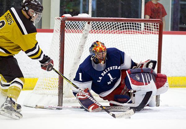 Hockey playing tips