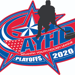Four Jr. Flyers teams advance to AYHL Playoffs this weekend