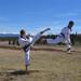 Taekwondo black belts doing high karate kicks and jump kicks