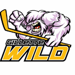 Gillette Wild Youth Hockey Logo