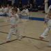 Littleton Taekwondo Institute - martial arts lessons in Littleton, CO
