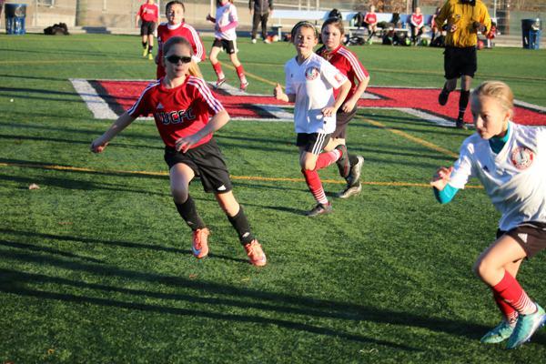 adult soccer Hoboken
