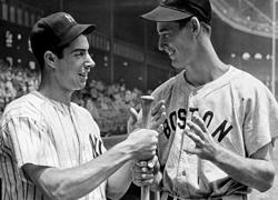 Dimaggio and williams small