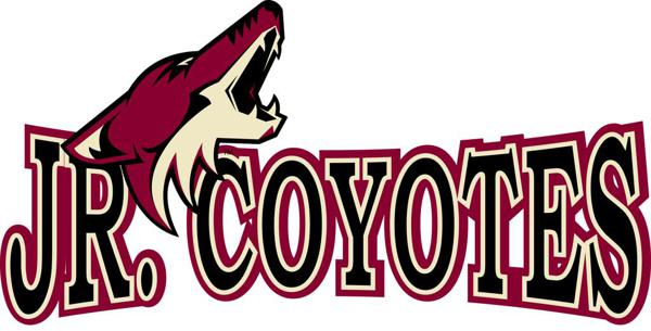 Coyotes amateur hockey association