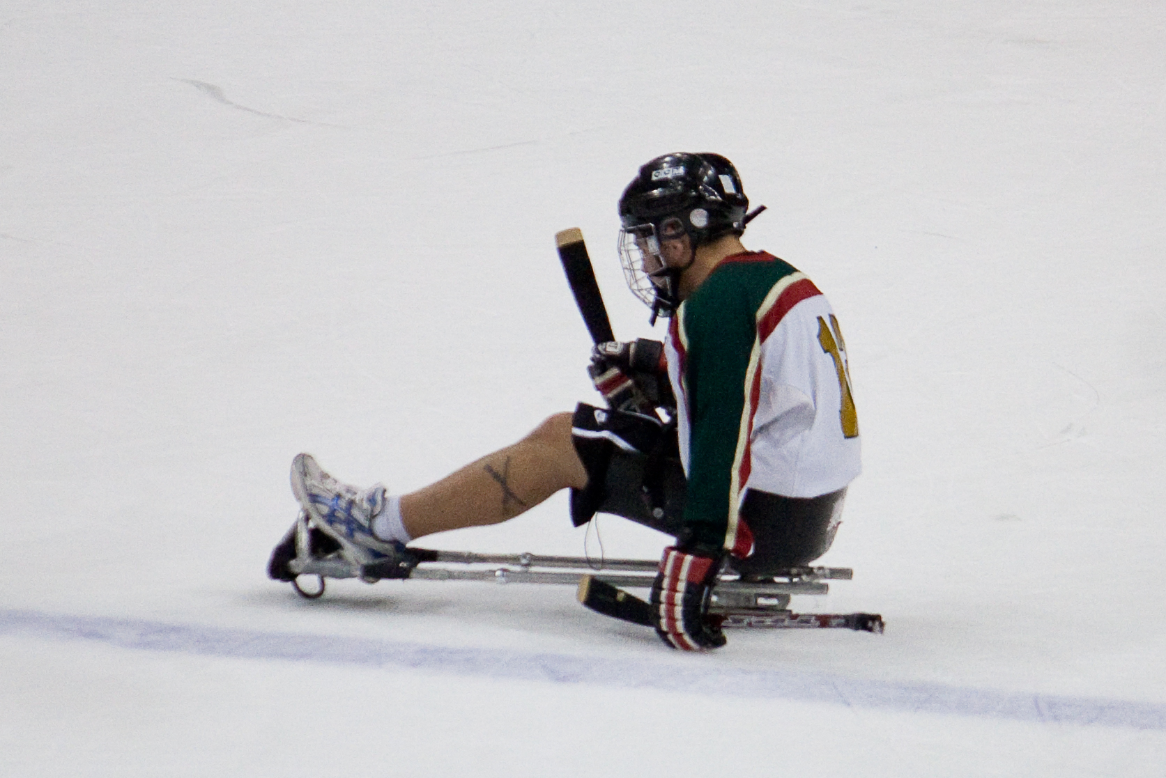 disabled hockey