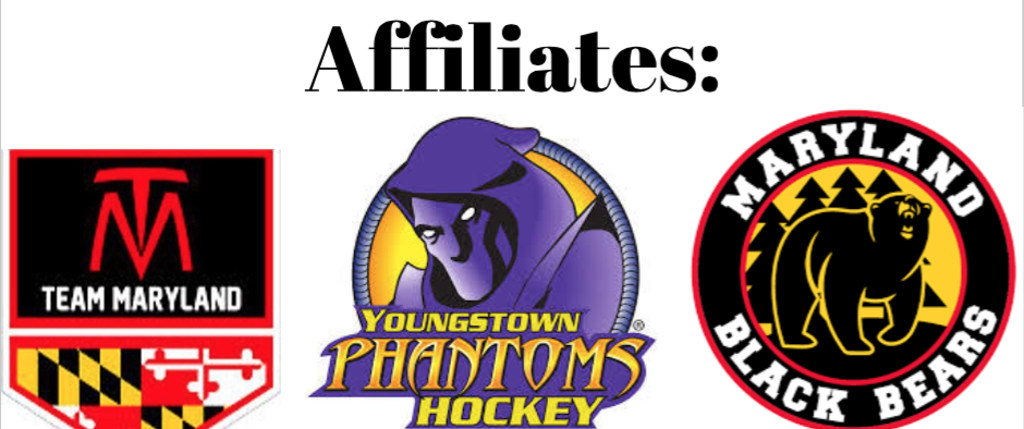 Renegades players will have access to camps, scouting services, etc... to these affiliates!!!