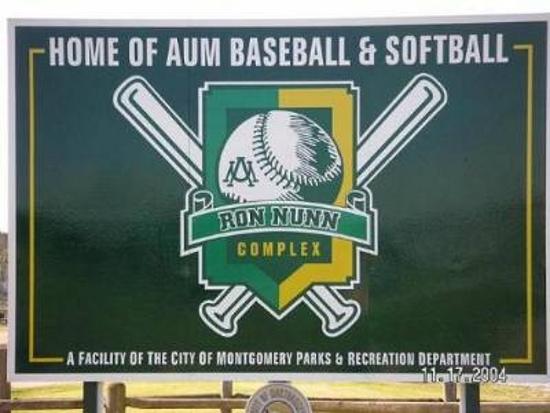 AUM Dixie Baseball