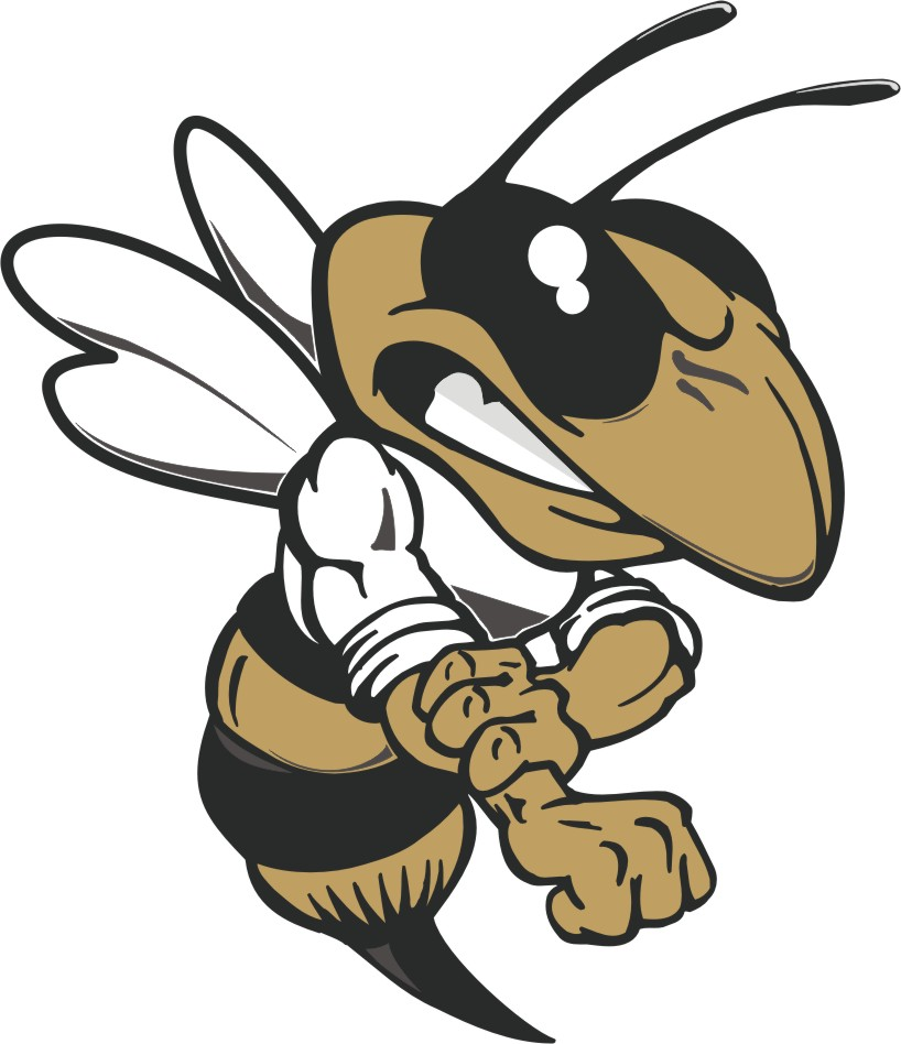sprayberry yellow jacket football logos
