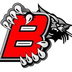 Bobcats logo small