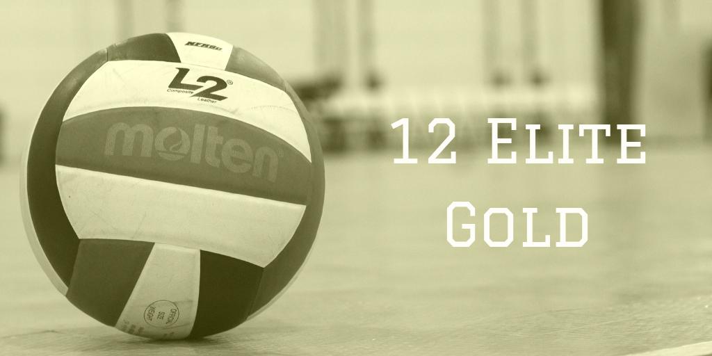 12 Elite Gold