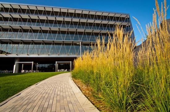 Minneapolis Community & Technical College