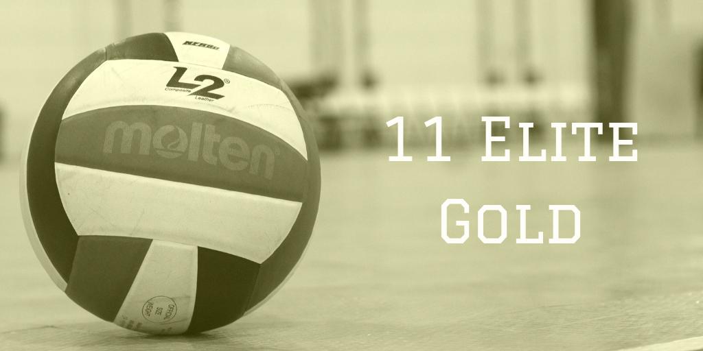 11 Elite Gold