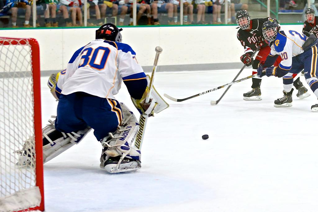 Aaron Dingmann makes another save on his way to a shut out versus a tough Duluth East team.