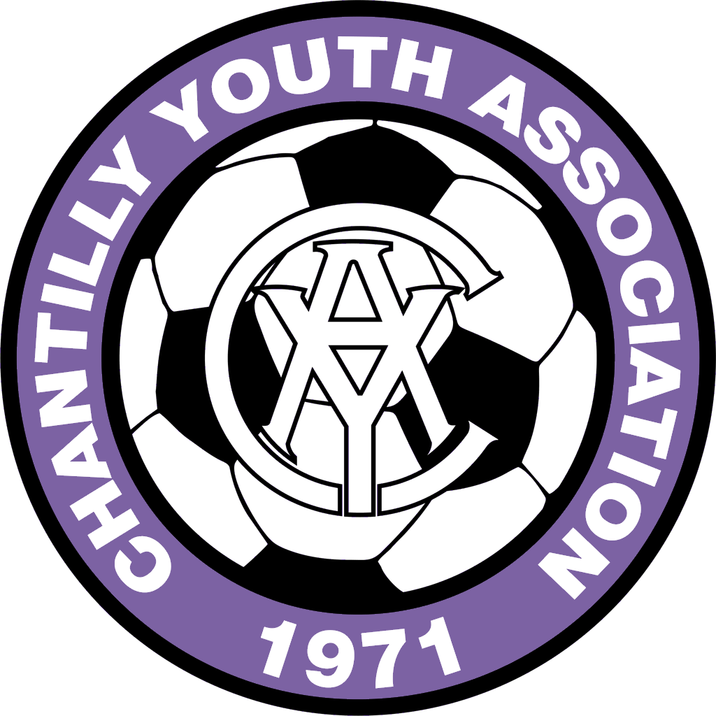 https://cdn1.sportngin.com/attachments/photo/2253/1835/CYA_Soccer_Logo_-_2_Color_large.png