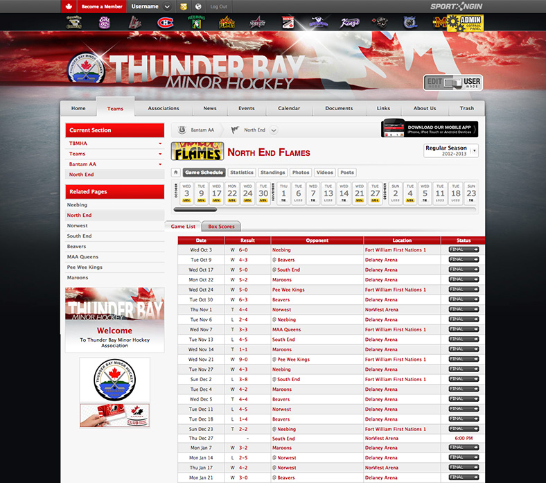 Sport Ngin Websites