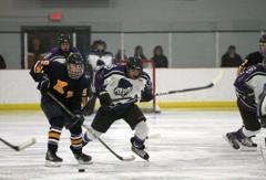 Hockey3 small