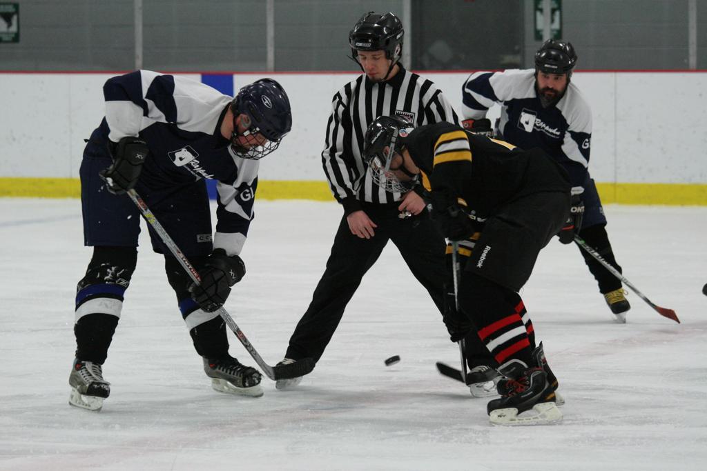 Adult hockey michigan