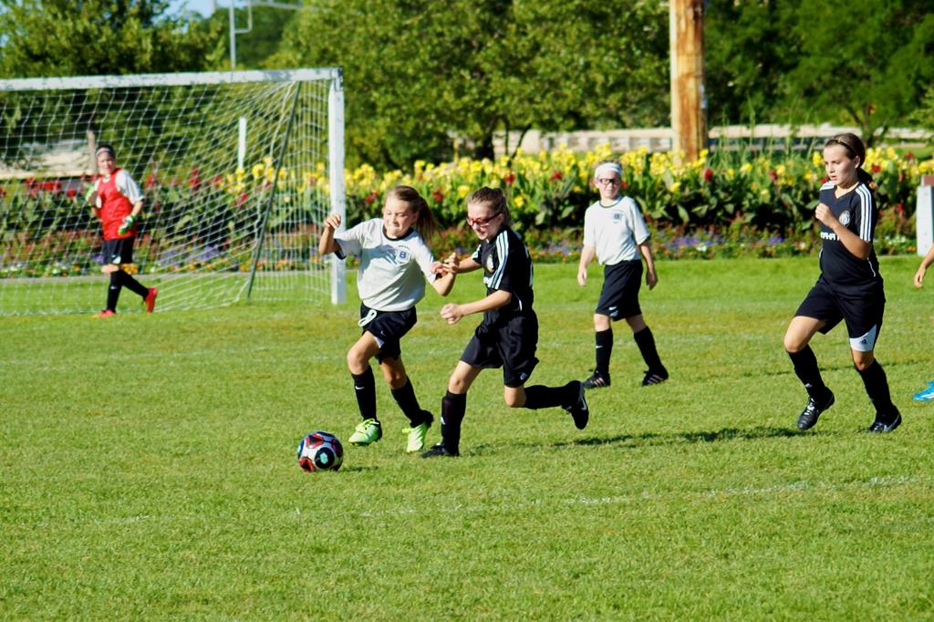 Grey game 2   ofc crushers 039 large