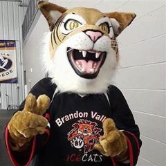 Photo of our mascot SlapShot