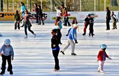 January Skaters