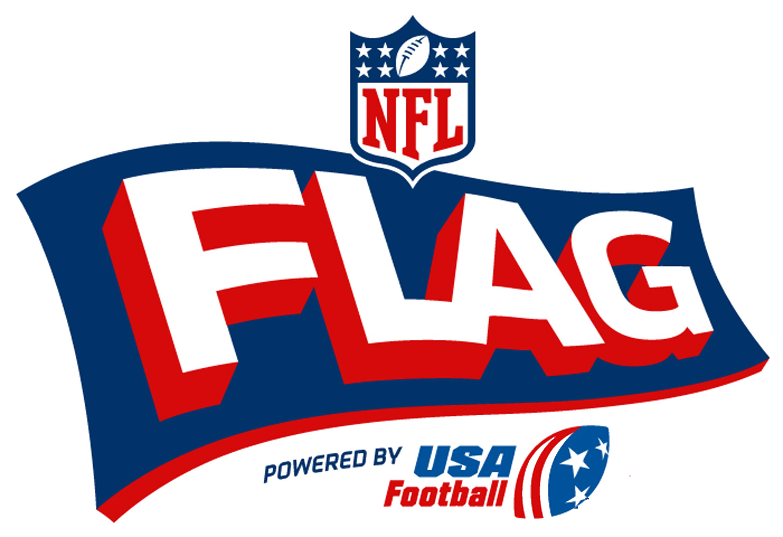 Image result for nfl flag