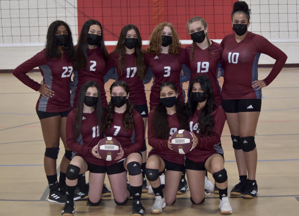 Fierce Elite Volleyball Club 14U