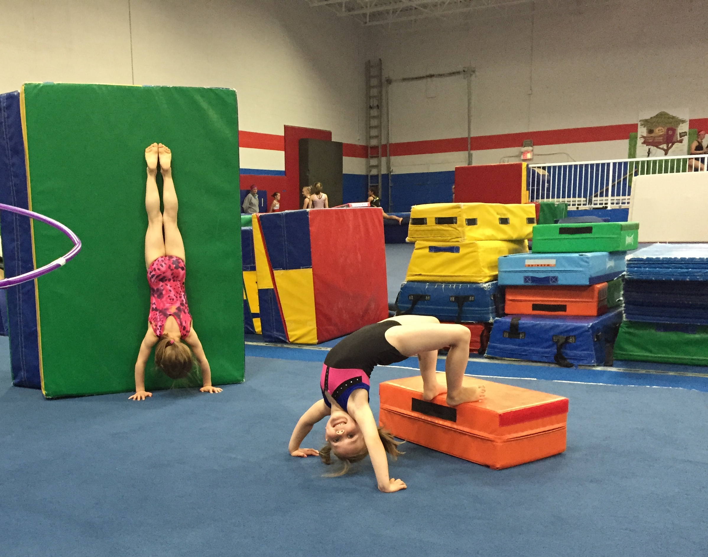 flipsgym Handstand and Bridge