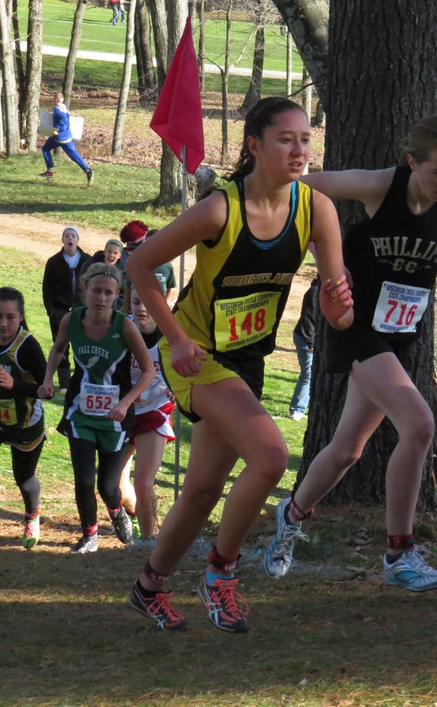 wiaa cross country state meet results 2015 world