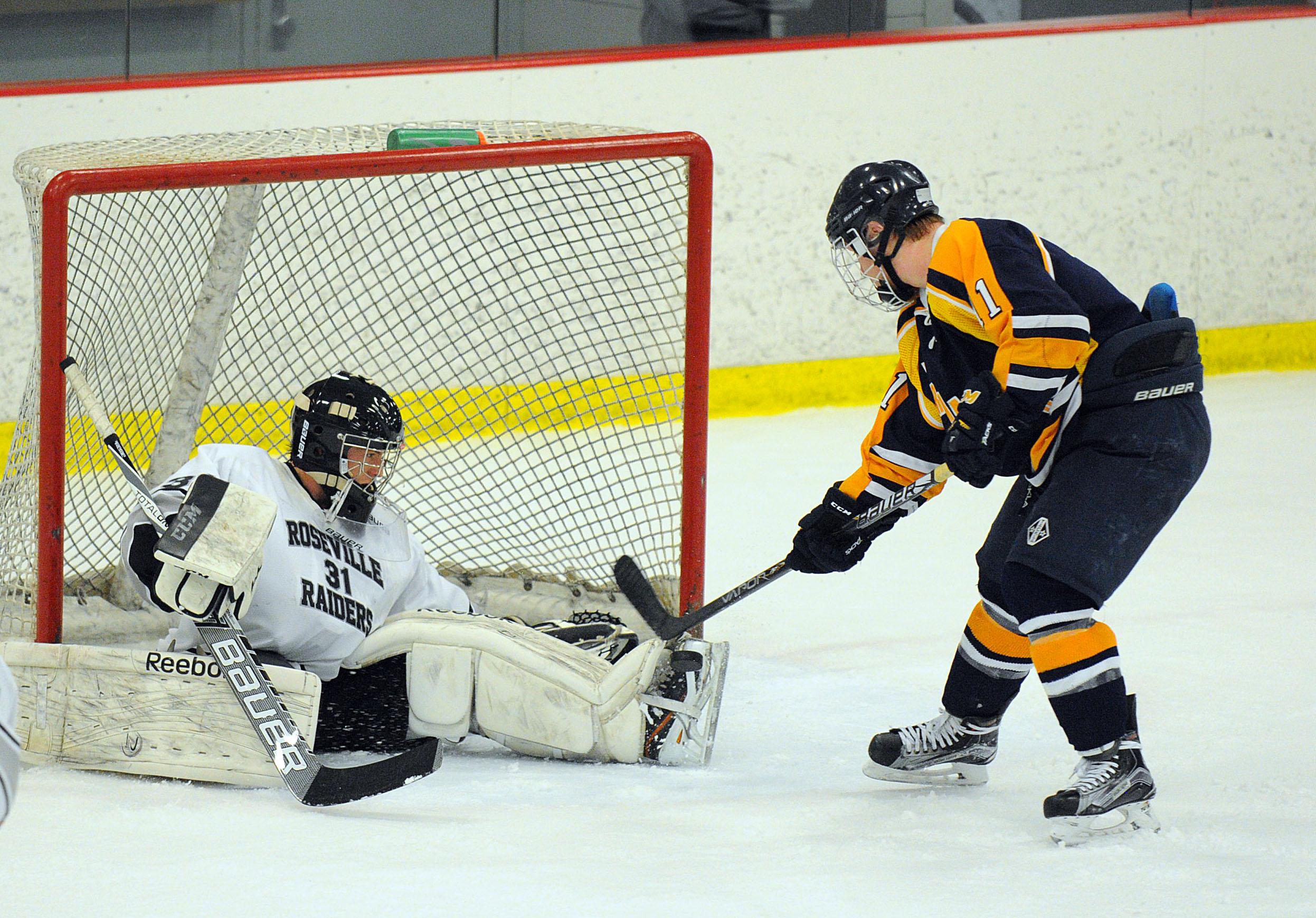 MN H.S.: Sandelin's Three Goals Helps Hermantown Hold Off Roseville