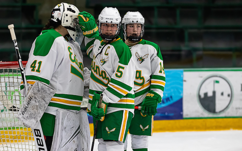 Edina has won the last three Class 2A state titles, a feat accomplished by Minnetonka earlier this decade. Photo by Gary Mukai, SportsEngine