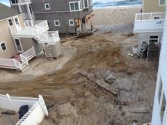 Hurricane Sandy came through the back yard.