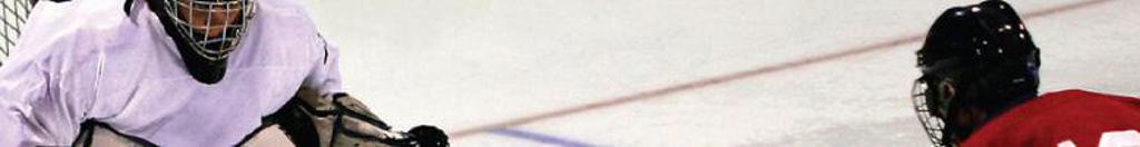 LPAA Hockey